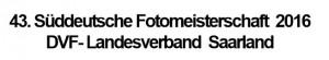 SFM-Logo
